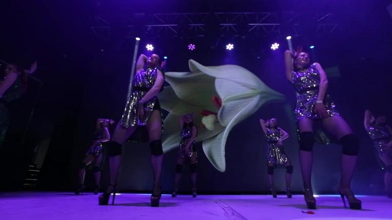 Strip Dance by Sima Redsi 2016 - Time Slow Down. Отчетный концерт D4U 2017.