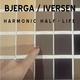 Bjerga/Iversen - Harmonic Half-Life, Pt. 2