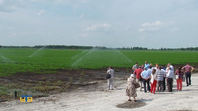 Участники VIII сибирских агрохимических Прянишниковских чтений посетили ООО Агрофирма КРиММ