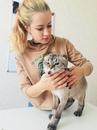 Персональный фотоальбом Екатерины Токачевой