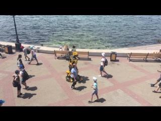 Бамблби | Bumblebee  в Севастополе