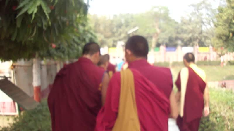 Дорзонг Ринпоче в Бодхгае. 2011 год