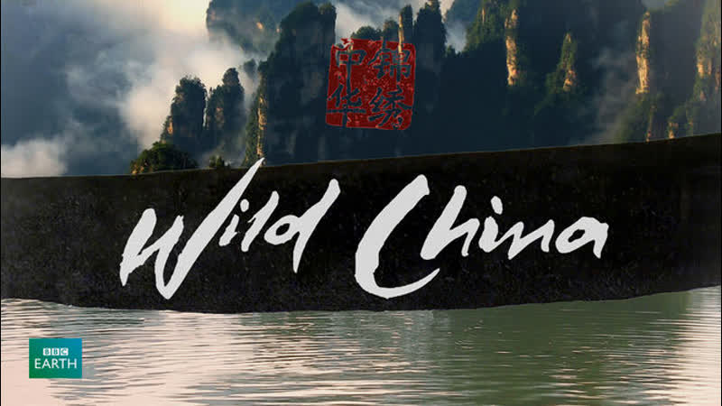 BBC Дикий Китай 1 серия Сердце дракона