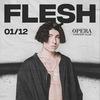 FLESH   01.12 - СПБ @ OPERA