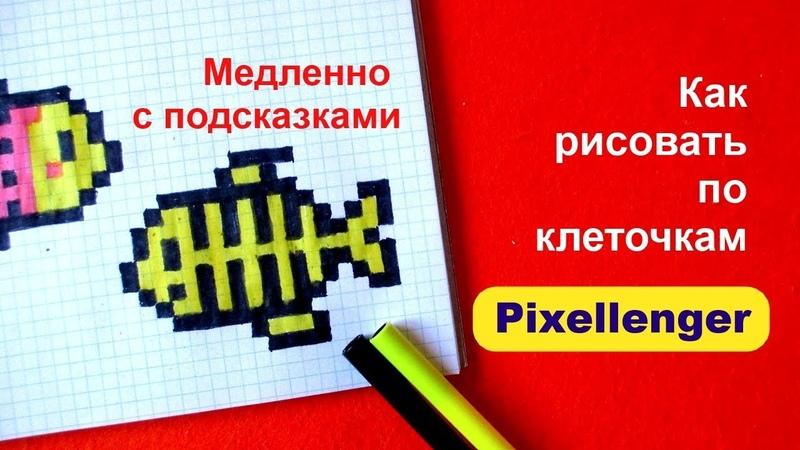 Челлендж Быстро - Медленно 1 Как рисовать Рыбку по клеточкам How to Draw Pixel Art for Kids