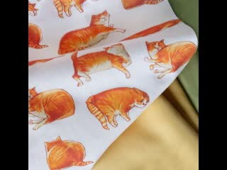 Рыжие коты TISSU