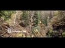 Грусный клип про охотника и волчонка