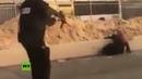 🔞 Fuerzas israelíes matan a tiros a una mujer palestina tras un presunto ataque con arma blanca