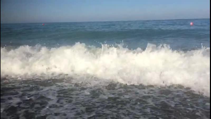 VIDEO 2019 08 11 09 18