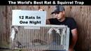 The World's Best Rat Squirrel Trap The Uhlik Repeater part 2 Mousetrap Monday