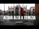 Acqua alta a Venezia: perché la città è stata colpita da una marea eccezionale
