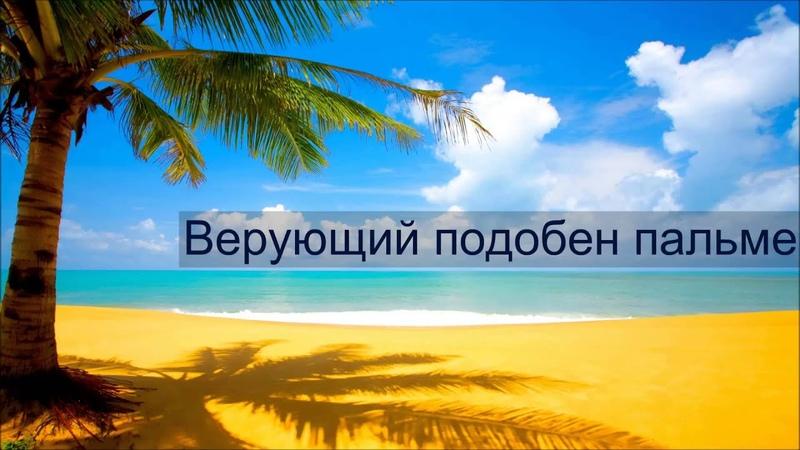 Абу Яхья Крымский Верующий подобен пальме
