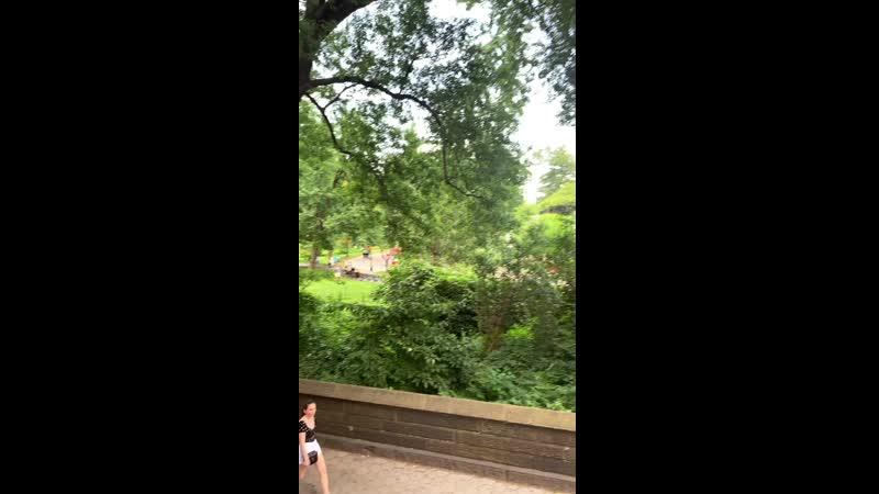 VIDEO-2019-08-17-15-13-02.mp4