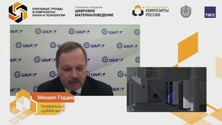 Михаил Гордин на III Международном форуме «Ключевые тренды в композитах: наука и технологии»