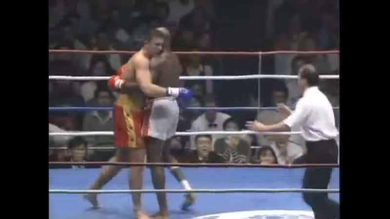 Ernesto Hoost vs Peter Aerts 3 (1995-05-04)