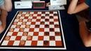 Тансыккужина - Ялг. Командный чемпионат Европы по международным шашкам 2019