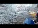 Бухалка или рыбалово