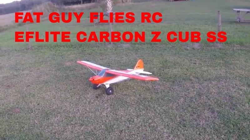 Eflite Carbon Z Cub SS 1 15 2020