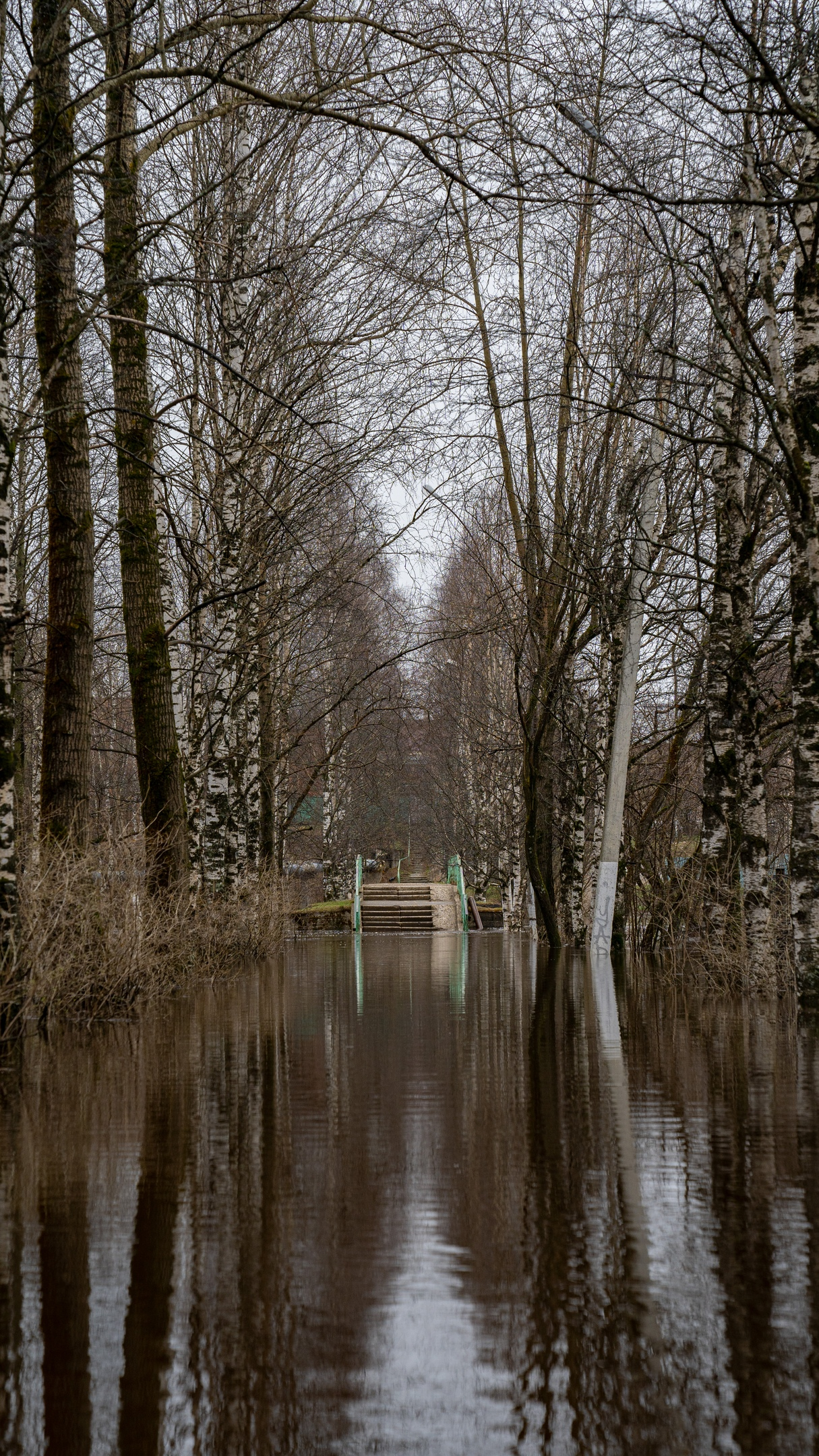 Паводок в Ухте: мониторинг, прогнозы и принимаемые меры, изображение №11