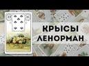 Значение карты Ленорман: Крысы, Мыши  