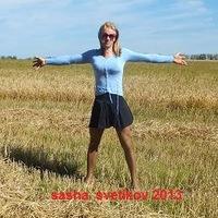 Sasha Svetikova