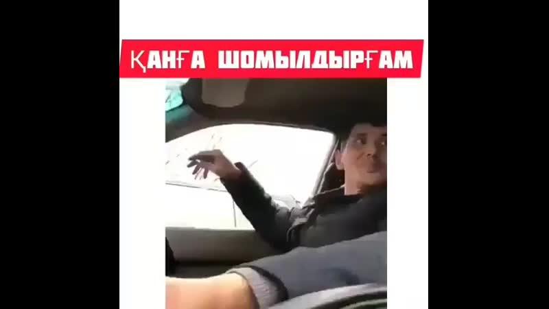 T0p.video0oB44UWDflCu_.mp4