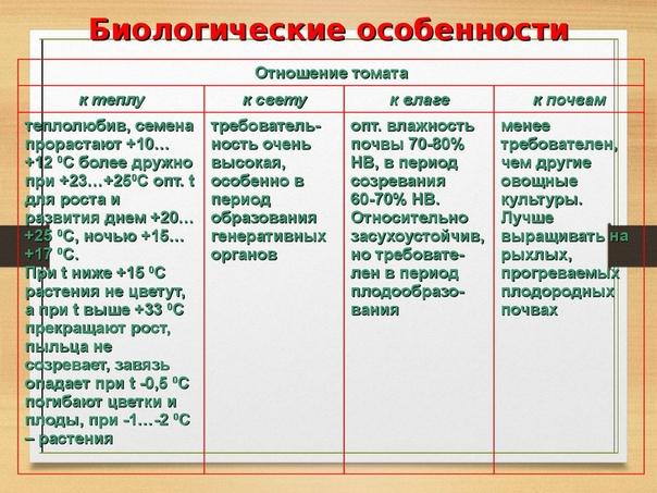 Томаты ( Овощеводство в России)