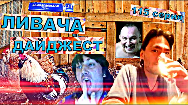ЛИВАЧА ДАЙДЖЕСТ(115 серия)