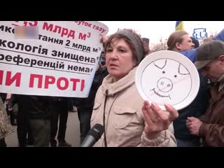 Предвыборная лихорадка на Украине