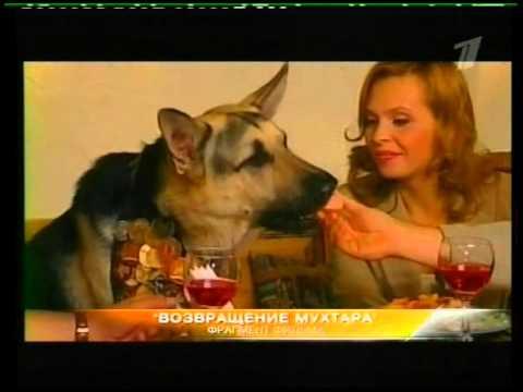 Korol ringa 1 sezon 5 serija iz 8 2007 XviD SATRip NiCK