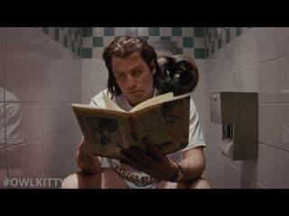Криминальное чтиво с котом