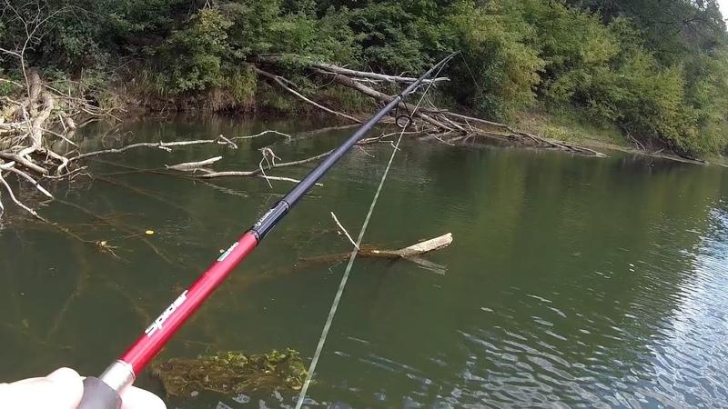 Голодная ЩУКА АТАКОВАЛА ГОЛАВЛЯ Рыбалка на голавля осенью 2019