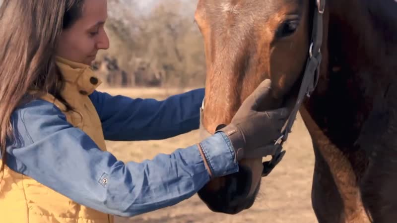 Анастасия Томашова о базовом воспитании лошади с курсом Основы