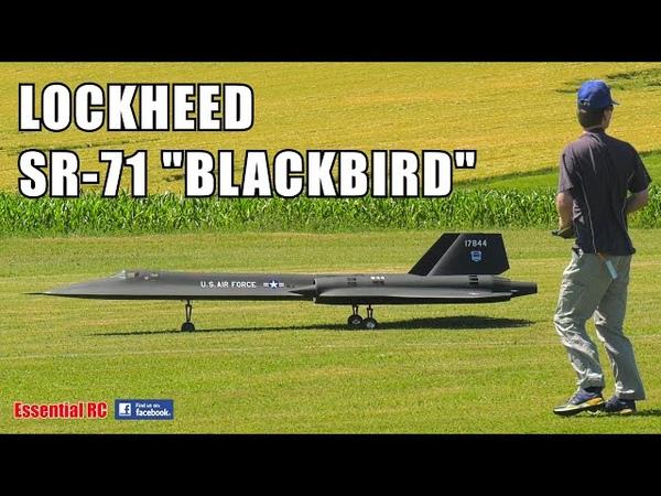 WOW HUGE LOCKHEED SR-71 BLACKBIRD TURBINE POWERED RC JET