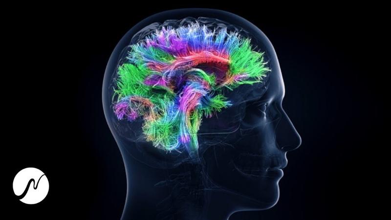 100% Gehirn Potenzial aktivieren Genie Frequenz Beta Wellen Brainwaves
