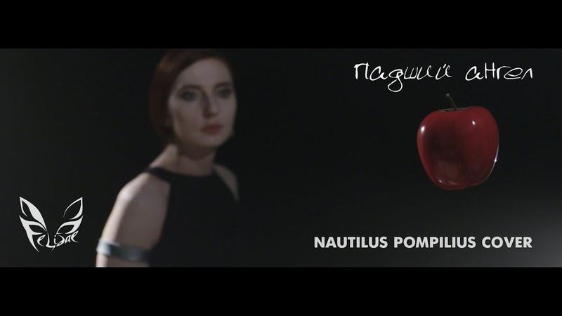Felidae Падший ангел Nautilus Pompilius cover Official video