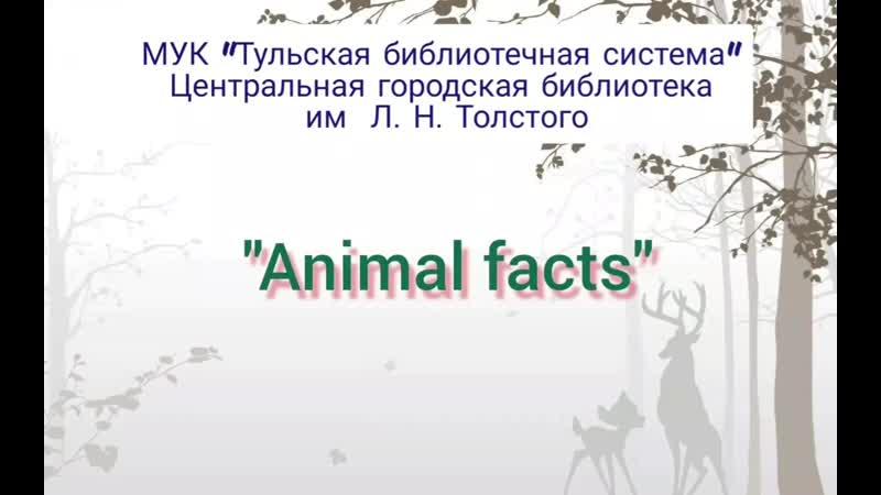 Видеожурнал «Animal facts» (Выпуск 1)