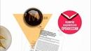 ResearcherID: внесение изменений в профиль | Thomson Reuters | Лекториум