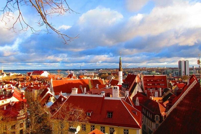 Страны мира — Эстония, изображение №5