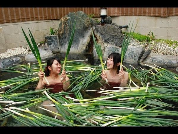 Зеленый Японский Лук Фукая 深谷ねぎ