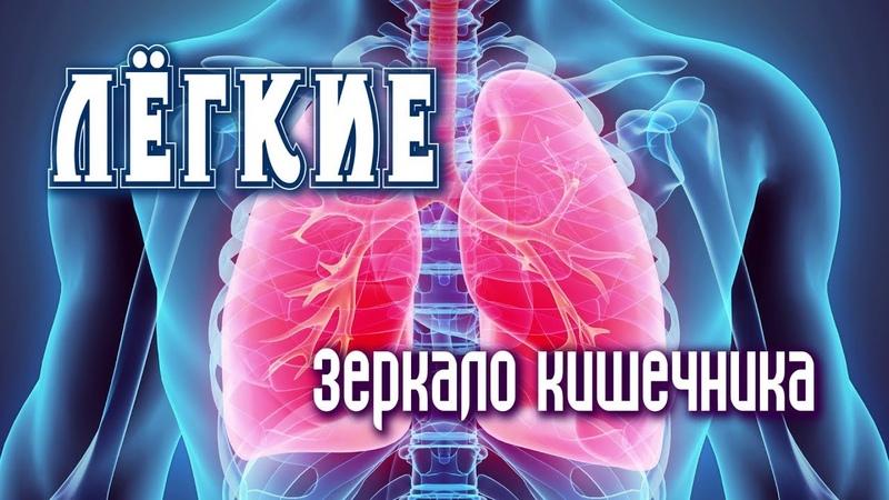 ЖИЗНЕННО ВАЖНАЯ ИНФОРМАЦИЯ! Лёгкие — зеркало кишечника