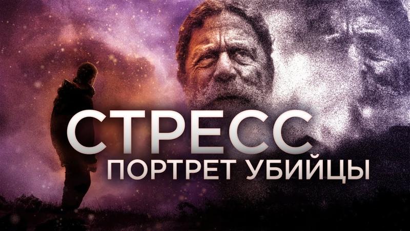 Роберт Сапольски Стресс Портрет убийцы Vert Dider