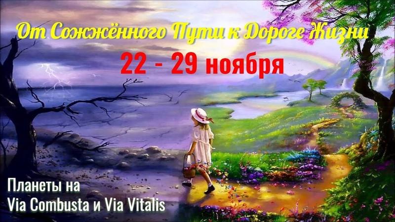 Змееносец-2 или От Сожжённого пути 16-21.11 к Дороге жизни 22-29.1