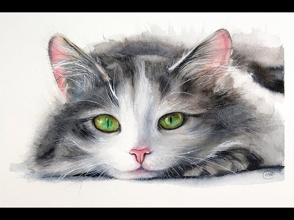 Cat Painting in Watercolor Fur and Whiskers