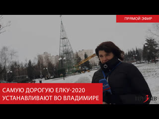 Самую дорогую елку-2020 устанавливают во Владимире