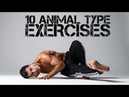 10 Animal Movement Exercises You can Practice movement mobility calisthenics