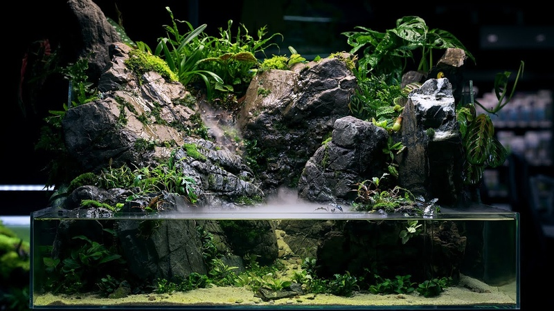 REAL WATERFALL and Monumental Hardscape PALUDARIUM Rainforest Experience