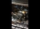 Видео от Катерины Погорелой