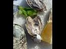 Видео от Живые морепродукты СПБ