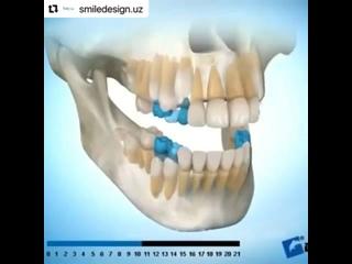 Видео от Клиника доктора Северинова